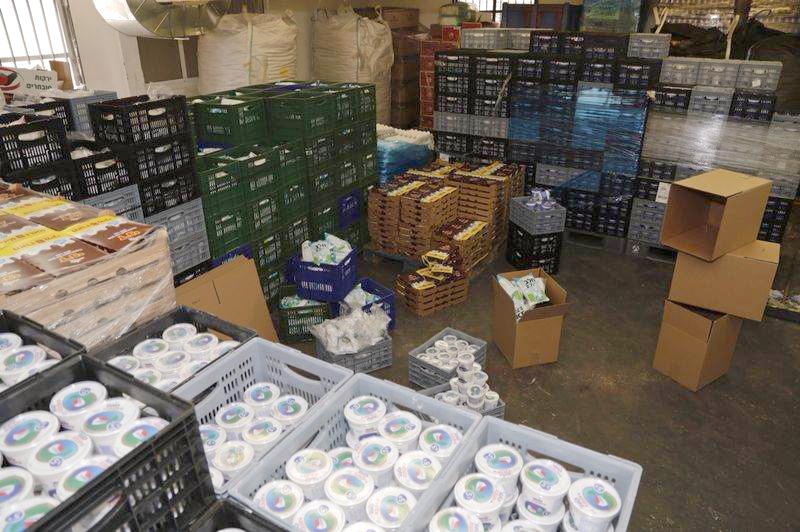 מתנדבים אורזים ערכות מוצרי חלב -לשבועות